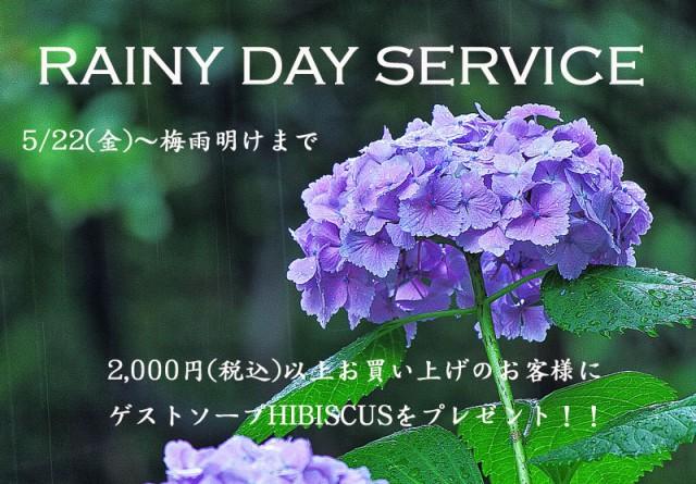 rainy2015