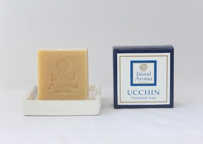 soap-image-ucchin02